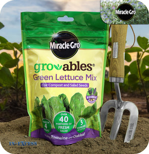 Miracle-Gro Gro-ables 100% Natural Green Lettuce Mix - 250g