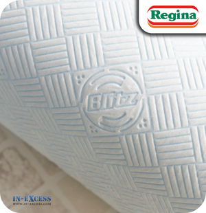 Regina Blitz Original Kitchen Towels - Pack of 3