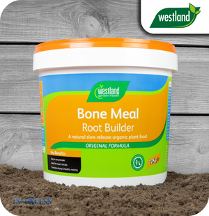 Westland Bone Meal Root Builder - 10kg