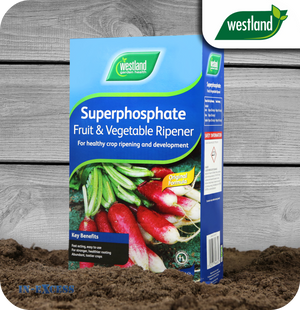 Westland Superphosphate Fruit & Vegetable Ripener - 1.5kg