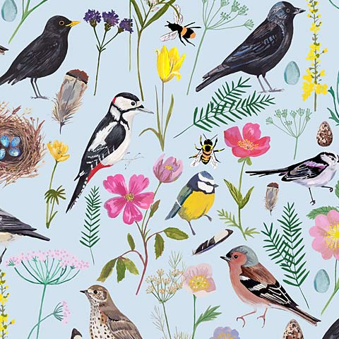 cornish-garden-birds-collection