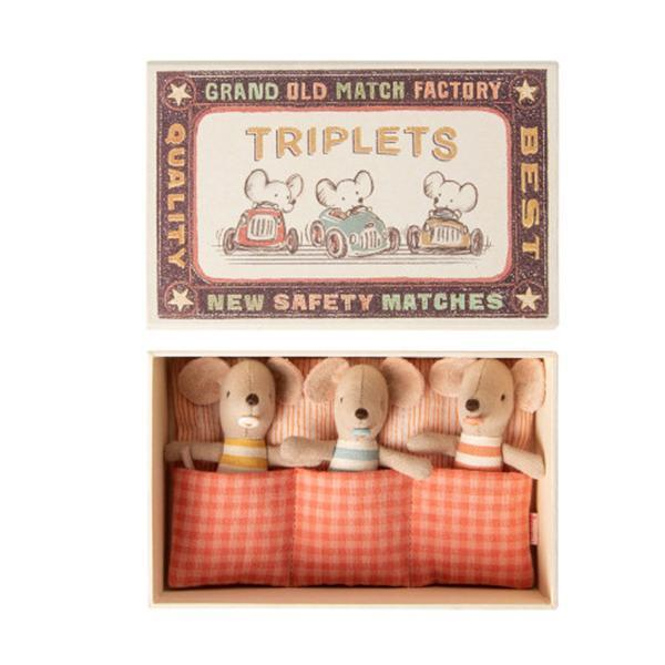 baby triplets in matchbox