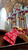 st bavo organ with red paisley bow tie