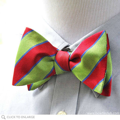 Bolton Repp Silk Woven bow tie on shirt