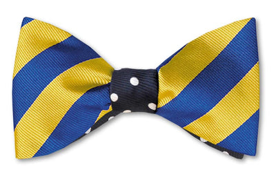 Yellow and blue stripe reversible with navy and white polka dot bow tie