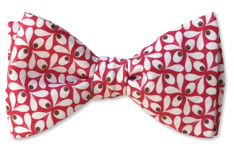 Mens Bow Tie in Red and Brown flowers on red