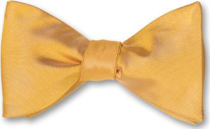 Gold Satin Formal Wedding Solid Bow Tie