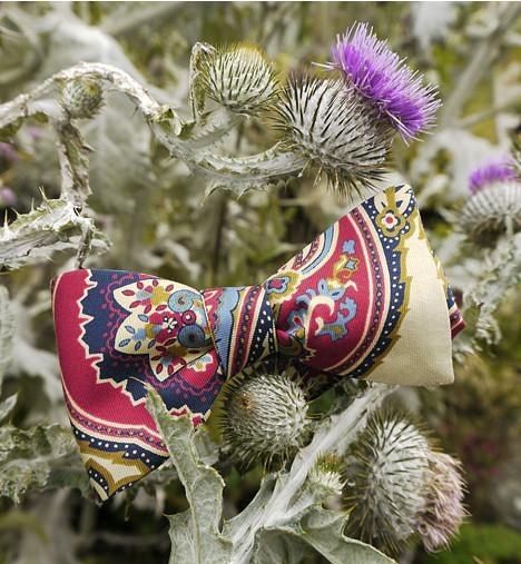 Paisley Bow Tie Talisker Bay on thistle bush