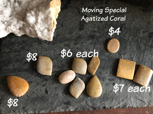 Agatized (fossilized) Coral Polished Cabochons FB1937 🚛🏡🚛Moving Special🚛🏡🚛