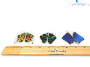 Genuine Butterfly Wing Earrings; FB1674