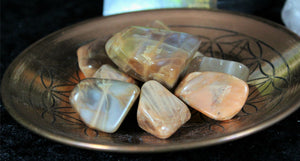Tumbled Coffee Moonstone