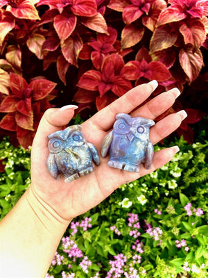 India Agate Owl; FB2715
