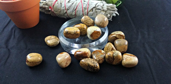 Tumbled Picture Jasper for visions, ideas, grounding and negativity