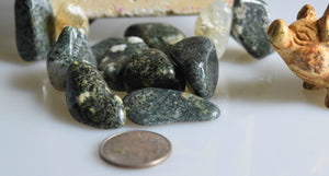 Tumbled Stonehenge Bluestone from Wales; FB1153