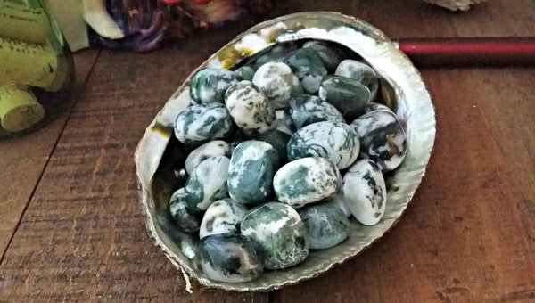 Tumbled Tree Agate (Dendritic Agate) for calm, centering, fidelity and family