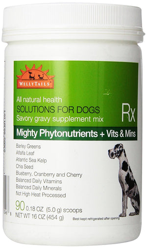 WellyTails Dog Supplements Mighty Green Phytonutrients plus Vitamins & Minerals - WellyTails Inc.