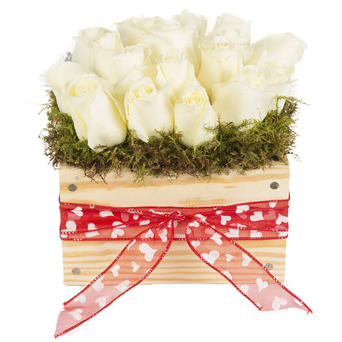 XOXO      Valentine's Day White Roses with Red/White Heart Ribbon