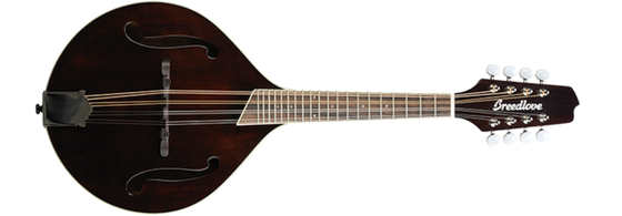 Breedlove Crossover OF VS Sitka Spruce - Maple