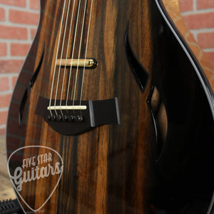 Taylor Custom T5z, African Ebony, Guitar Quote # 10794