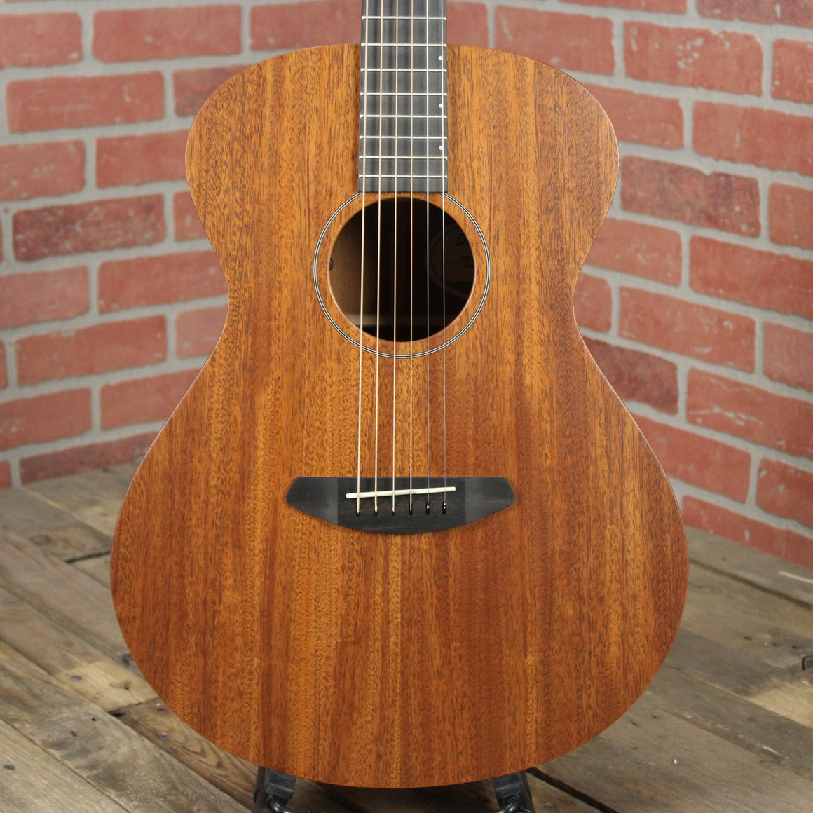 USA Concert Day Light E Mahogany - Mahogany