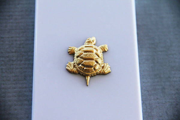 Textured Turtle - Animal & Insect Cases - Case Cavern - 2