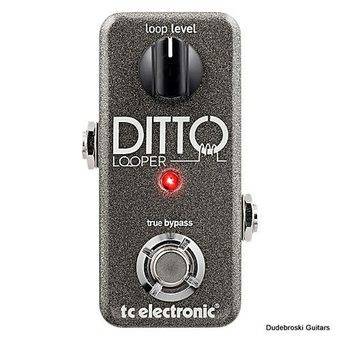 TC Electronic Ditto Looper, 5 Minutes of Looping Time, Analog-Dry-Through - Dudebroski Guitars
