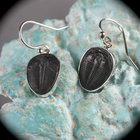 Trilobite Fossil sterling silver earrings