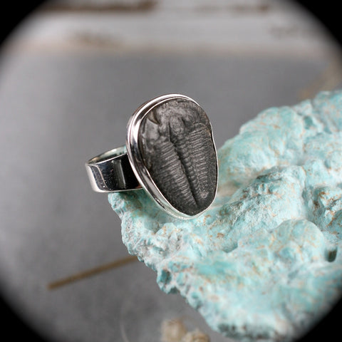 Trilobite Fossil sterling silver ring