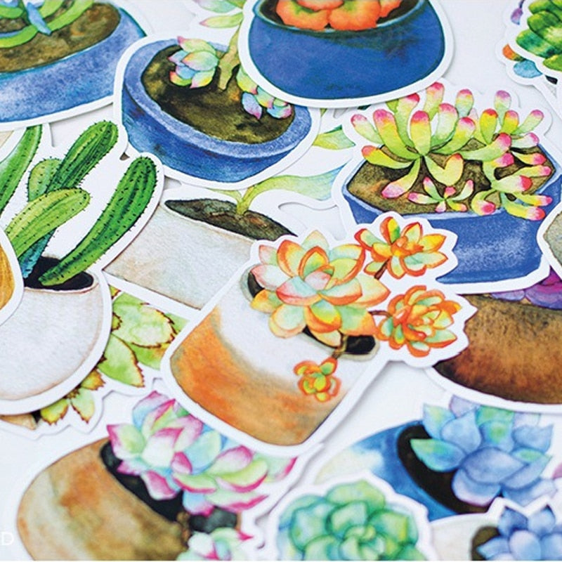 Succulent Postcard Stationary Set - 30pcs