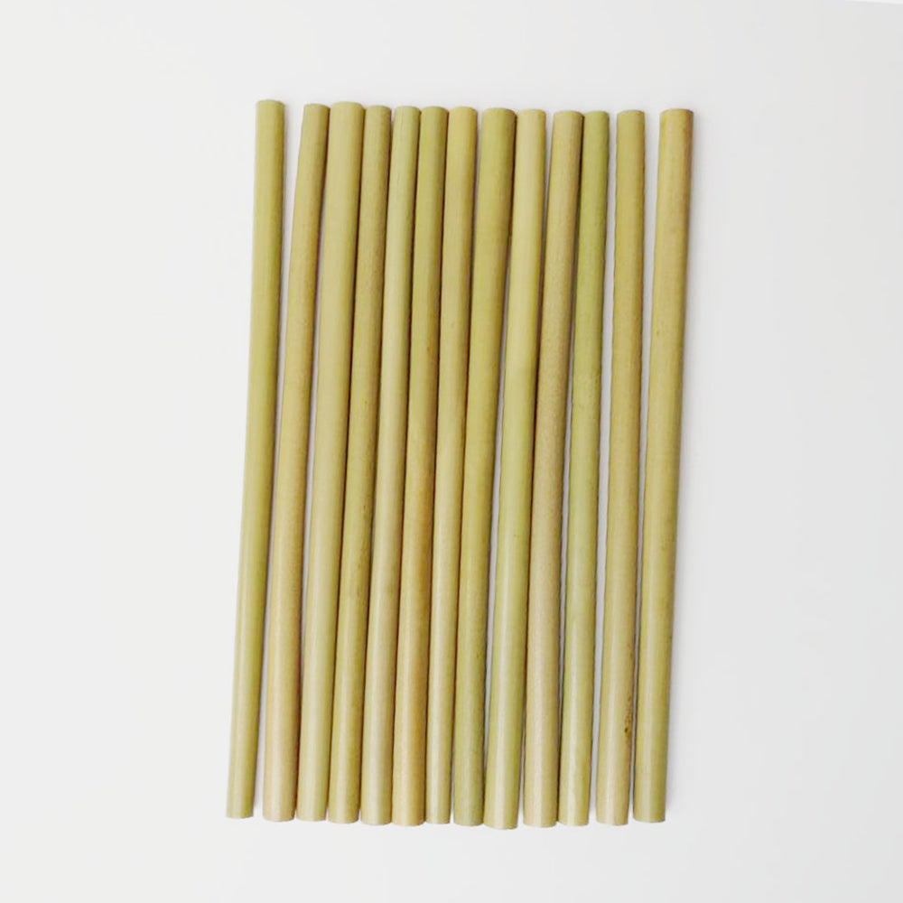10pc Reusable Bamboo Straw plus Clean Straw kit