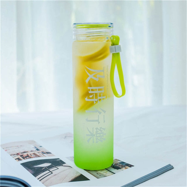 Fashion Frosted Glass Water Bottle 450ml