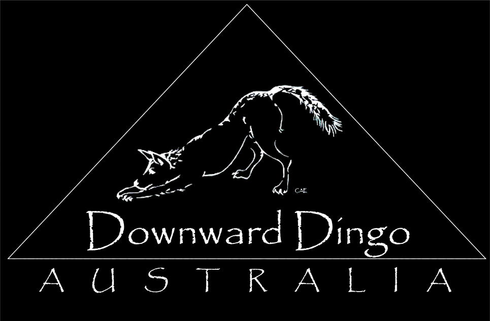 Downward Dingo