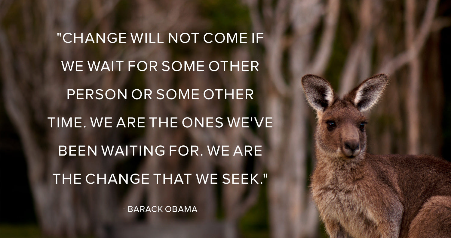Change will not come if we wait for some other person or some other time. We are the ones we've been waiting for. We are the change that we seek.