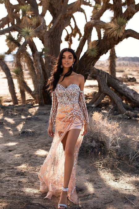 A&N Luxe Ariya Sequin Gown - Rose Gold