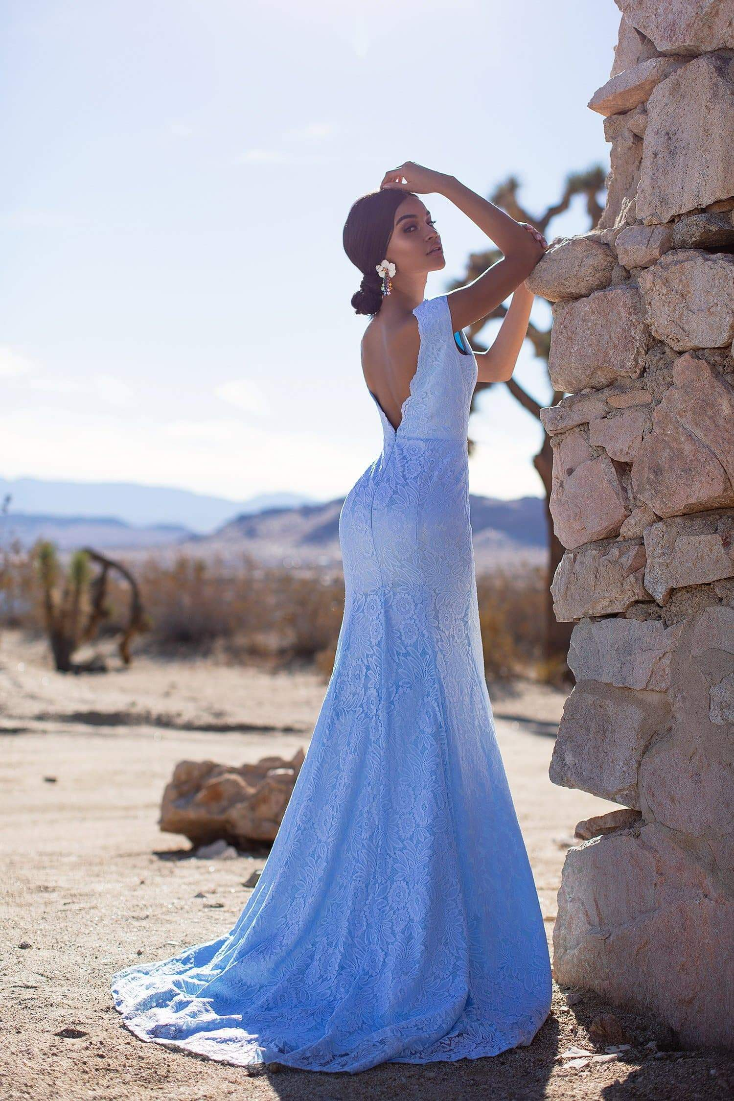 A&N Luxe Ivy - Sky Blue Lace Gown with Plunge Neck & Open Back