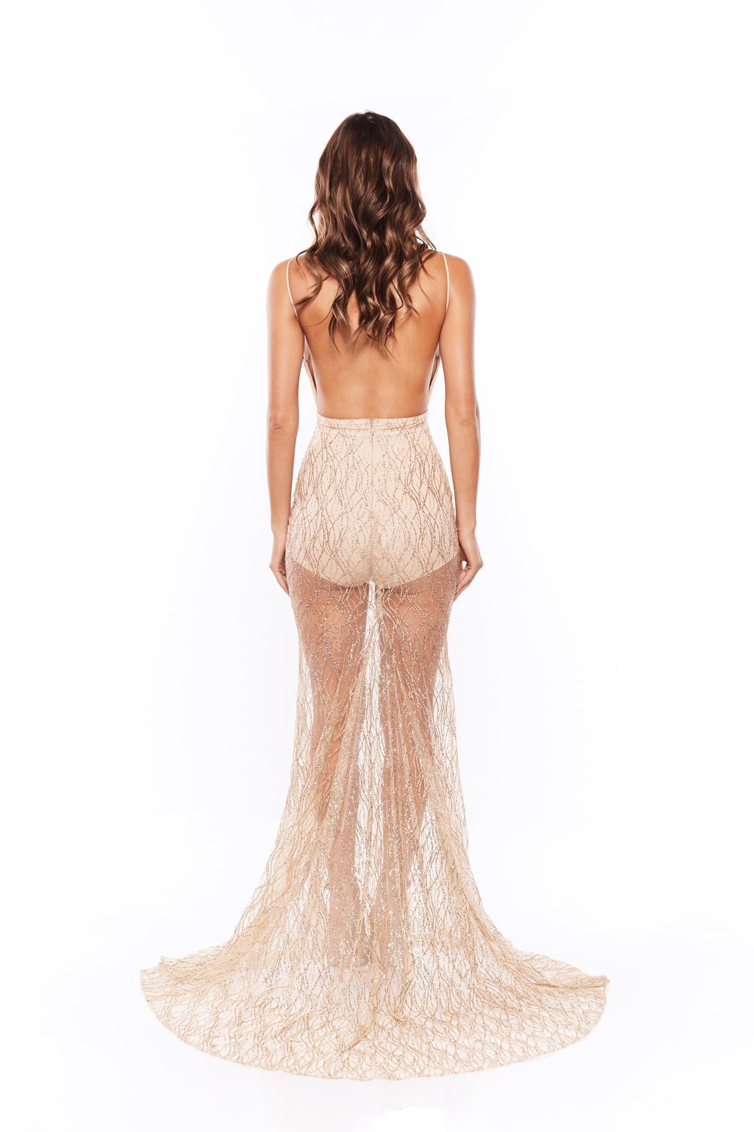 Joella - Gold Sheer Glitter Gown with Low Back & Plunge Neckline