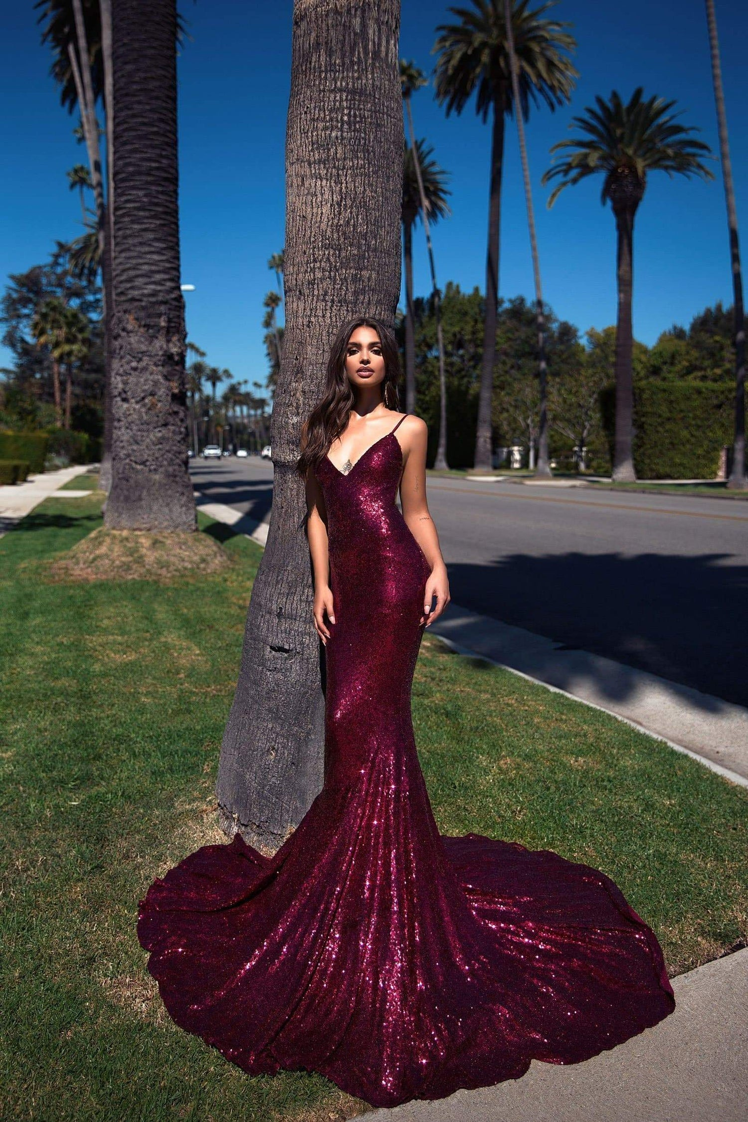 Yassmine Luxe - Burgundy Sequin Gown with Plunge Neckline & Low Back