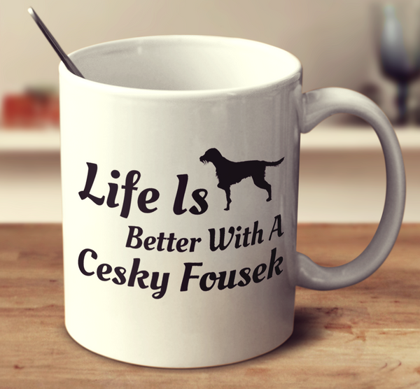 Life Is Better With A Cesky Fousek