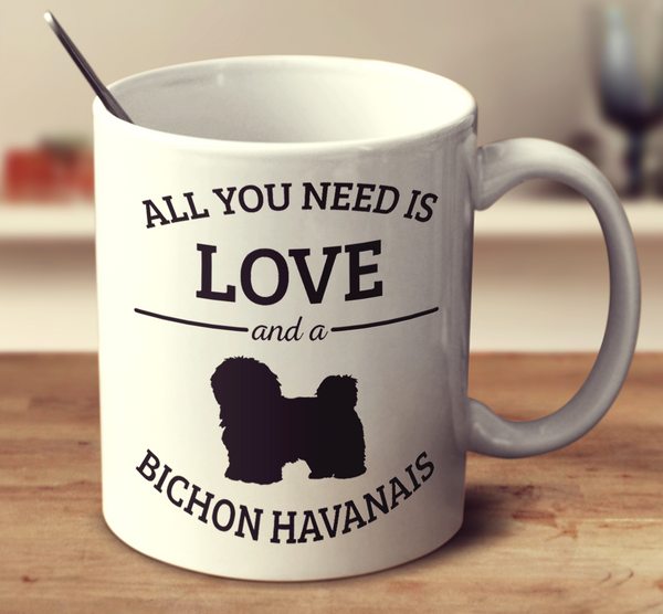 All You Need Is Love And A Bichon Havanais