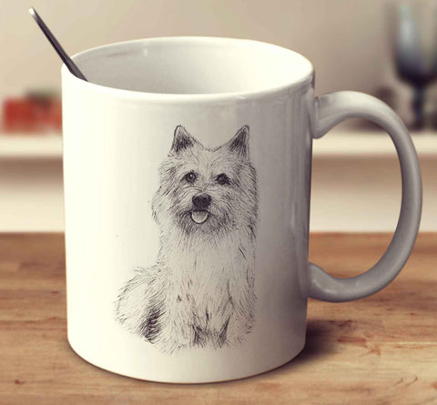 Norwich Terrier Sketch