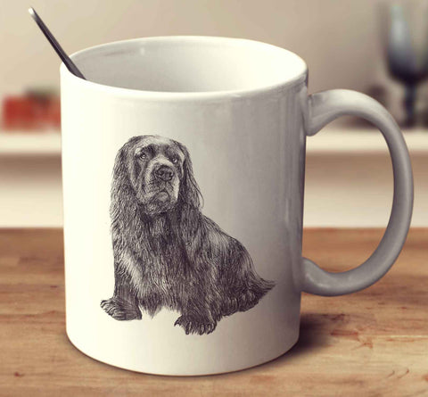 Sussex Spaniel Sketch