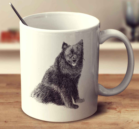 Swedish Lapphund Sketch