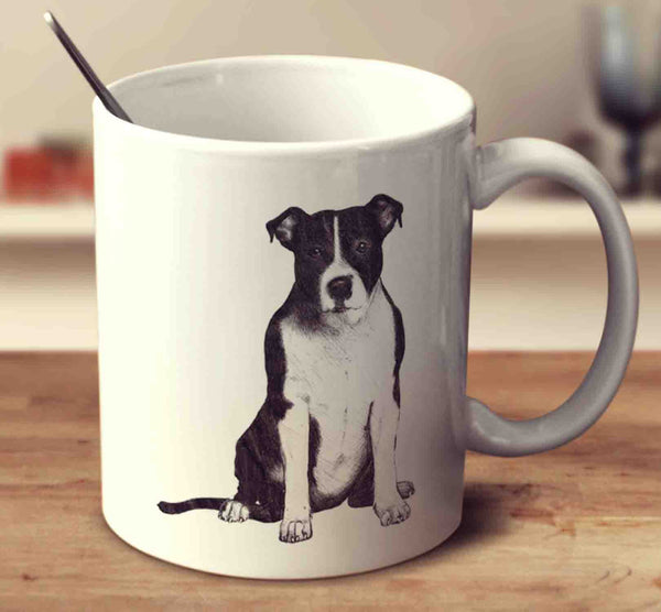 American Staffordshire Terrier Sketch