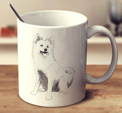 Icelandic Sheepdog Sketch