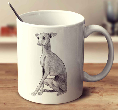 Italian Greyhound Sketch