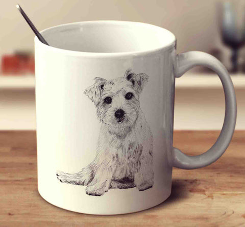 Norfolk Terrier Sketch