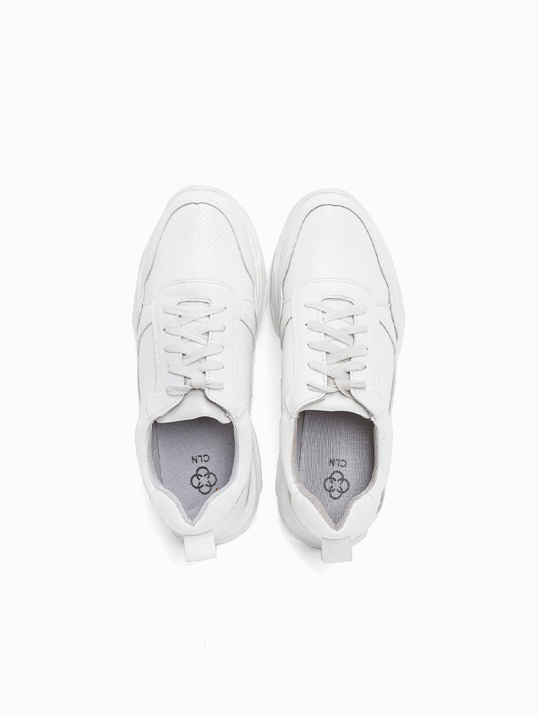 Pasadena Lace Up Sneakers