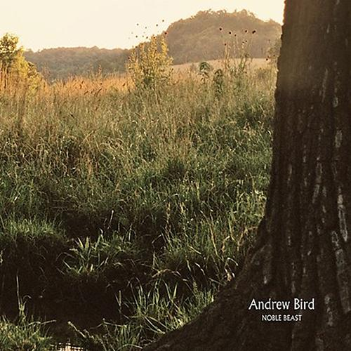 Andrew Bird - Noble Beast (2LP) Vinyl Record  (4479945244736)