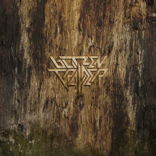 Blitzen Trapper - Furr (10th Anniversary Deluxe Edition)[2LP Loser Edition Clear and Gold Color Vinyl Record]  (1361290919995)
