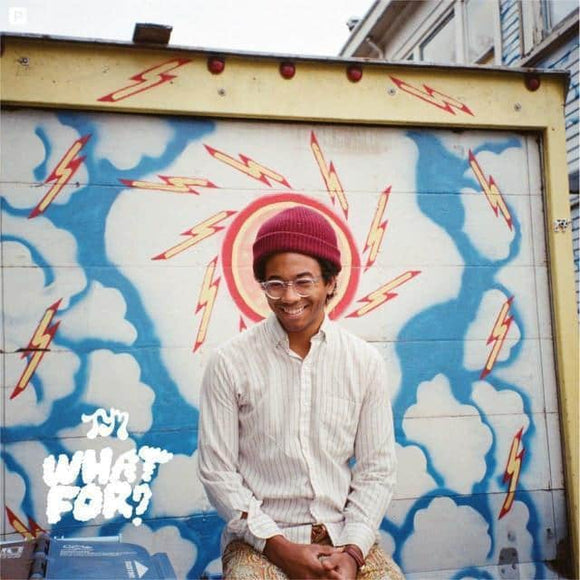 Toro Y Moi - What For? Vinyl Record  (1247786883)